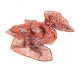 Écharpe colorée d'été d'isolement sur le blanc Images stock
