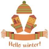 écharpe d'hiver et mitaine et chapeau tricotés Image stock