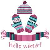 écharpe d'hiver et mitaine et chapeau tricotés Photo stock