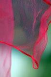 Écharpe rose au néon Photo libre de droits
