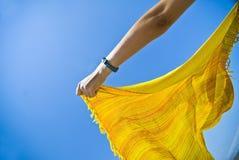 Écharpe soufflée par vent Photographie stock libre de droits