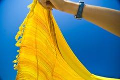 Écharpe soufflée par vent Photos libres de droits