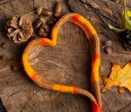 Écharpe sous forme de coeur sur le concept en bois de fond des mers Photos libres de droits