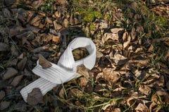 Écharpe tricotée par blanc photo libre de droits