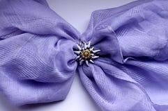 Écharpe violette avec le soleil Images stock