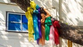 Écharpes colorées attachées à un arbre Photographie stock libre de droits