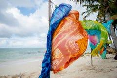 Écharpes de soufflement de vent de mer photographie stock libre de droits
