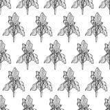 Échecs de noir de modèle d'iris de fleur illustration stock