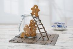 Échelle de pain d'épice Photographie stock libre de droits