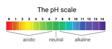 Échelle de pH équilibre infographic d'acide-base échelle pour la base d'acide d'analyse chimique Photo libre de droits