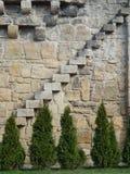 Échelle sur un mur médiéval Image libre de droits
