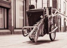 Échelles typiques de nettoyage de rue dans les villes de Ténérife photographie stock