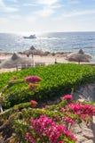 Échouez à l'hôtel de luxe, Sharm el Sheikh, Egypte photographie stock libre de droits