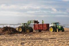 Échouez l'équipage de nettoyage travaillant à l'élimination de plage sablonneuse Photographie stock libre de droits
