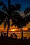 Échouez les paumes sihouetted et le coucher du soleil, Rarotonga, cuisinier Islands Image stock