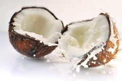 Éclaboussement criqué de noix de coco Photos stock