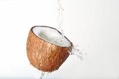 Éclaboussement des noix de coco Image libre de droits