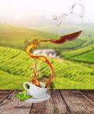 Éclaboussement du thé noir du pot de thé dans la tasse blanche de porcelaine Plantation verte sur le fond image stock