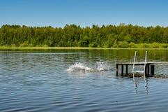 Éclaboussez l'eau sur la surface du lac Photos libres de droits