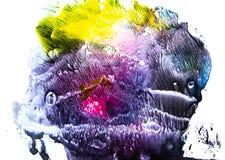 Éclaboussure colorée d'aquarelle Images libres de droits