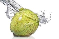 Éclaboussure d'eau doux sur la noix de coco Image libre de droits