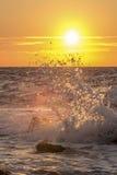 Éclaboussure d'onde au coucher du soleil Photos libres de droits