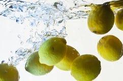 Éclaboussure de citrons dans l'eau Images libres de droits