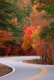 Éclaboussure de couleur d'automne Photographie stock libre de droits