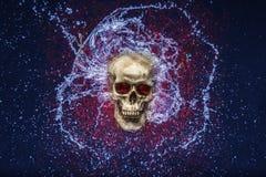 Éclaboussure de crâne photos stock