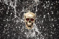 Éclaboussure de crâne photographie stock libre de droits