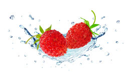 Éclaboussure de fraisier commun et d'eau Photos stock