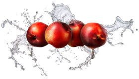 Éclaboussure de l'eau avec la nectarine d'isolement Photographie stock