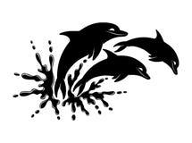 Éclaboussure de l'eau et dauphin trois illustration stock