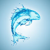 Éclaboussure de l'eau formée par poissons Photo libre de droits