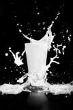 Éclaboussure de lait sur le fond noir Photos libres de droits