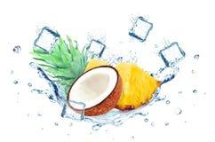 Éclaboussure de noix de coco et d'ananas Photographie stock