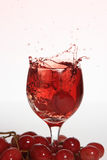éclaboussure de raisin de boissons Photographie stock