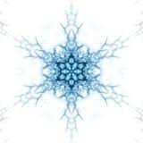 Éclaille de neige Photo libre de droits