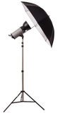 Éclair de lumière de stroboscope de studio avec le parapluie photo libre de droits