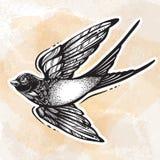 Éclair de tatouage de Blackwork Oiseau volant admirablement détaillé d'hirondelle Rétro conception de style de cru Illustration d illustration stock