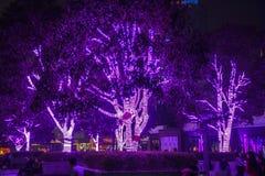 Éclairage décoratif sur des arbres Photographie stock