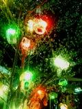 Éclairage d'arbre image libre de droits
