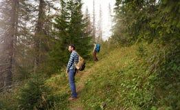 Éclairage de la charge tout en augmentant dans une forêt Photo libre de droits