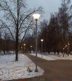 Éclairage de soirée en parc Images stock