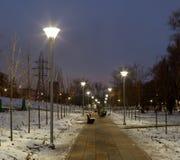 Éclairage de soirée en parc Photo libre de droits