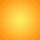 Éclat de Sun Images libres de droits