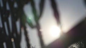 Éclat de Sun par la porte de fer banque de vidéos