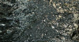 Éclat de Sun sur l'eau noire clips vidéos
