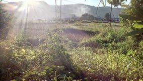 Éclat de Sun sur la montagne photos libres de droits