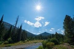Éclat du soleil de parc national de Yellowstone Images libres de droits